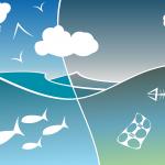 L'inquinamento dei mari