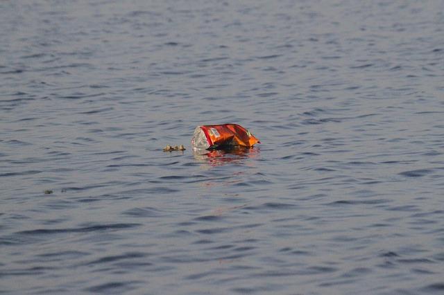 stonature giornata mondiale oceani